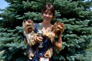 Quelinda`s Yorkshire Terrier Meine Zucht 3