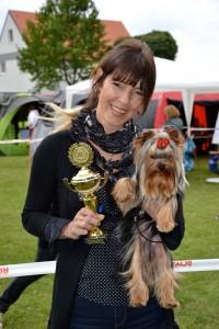 Quelinda`s Yorkshire Terrier Meine Zucht 5